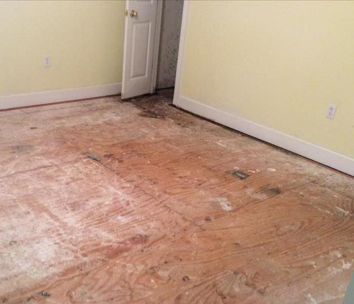 Local home with Mold Damage Before