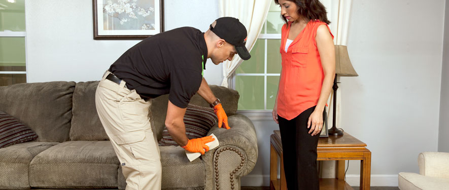 Hammond, LA carpet upholstery cleaning